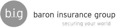 Baron Insurance Group Logo - Website Development Project