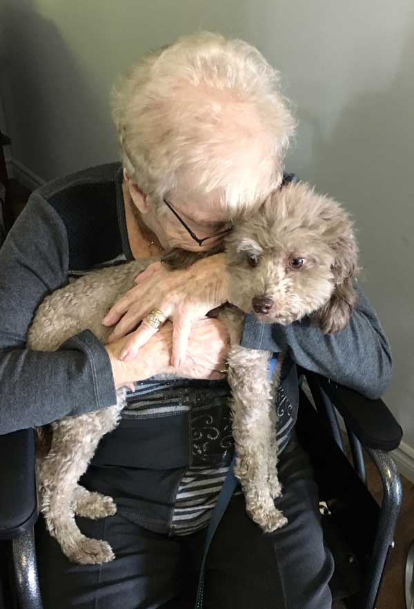 elderly with a dog, zootherapy