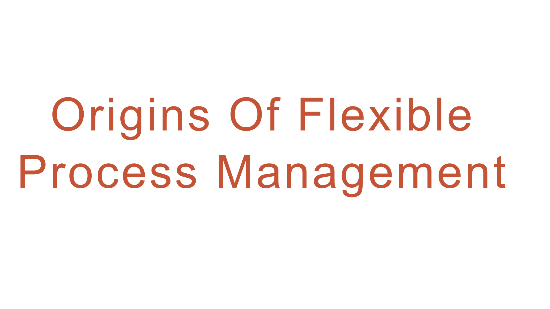 Banner with words Origins Of Flexible Process Management