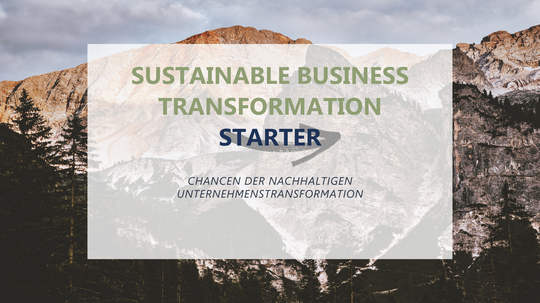 Sustainable Business Transformation Starter