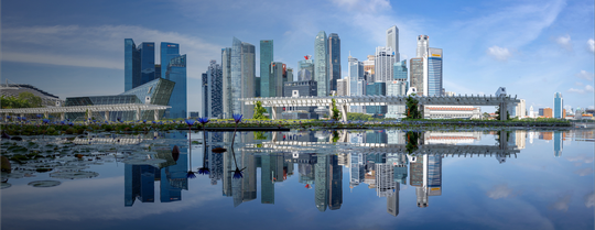 Sustainable Business Transformation Leader - Asia -