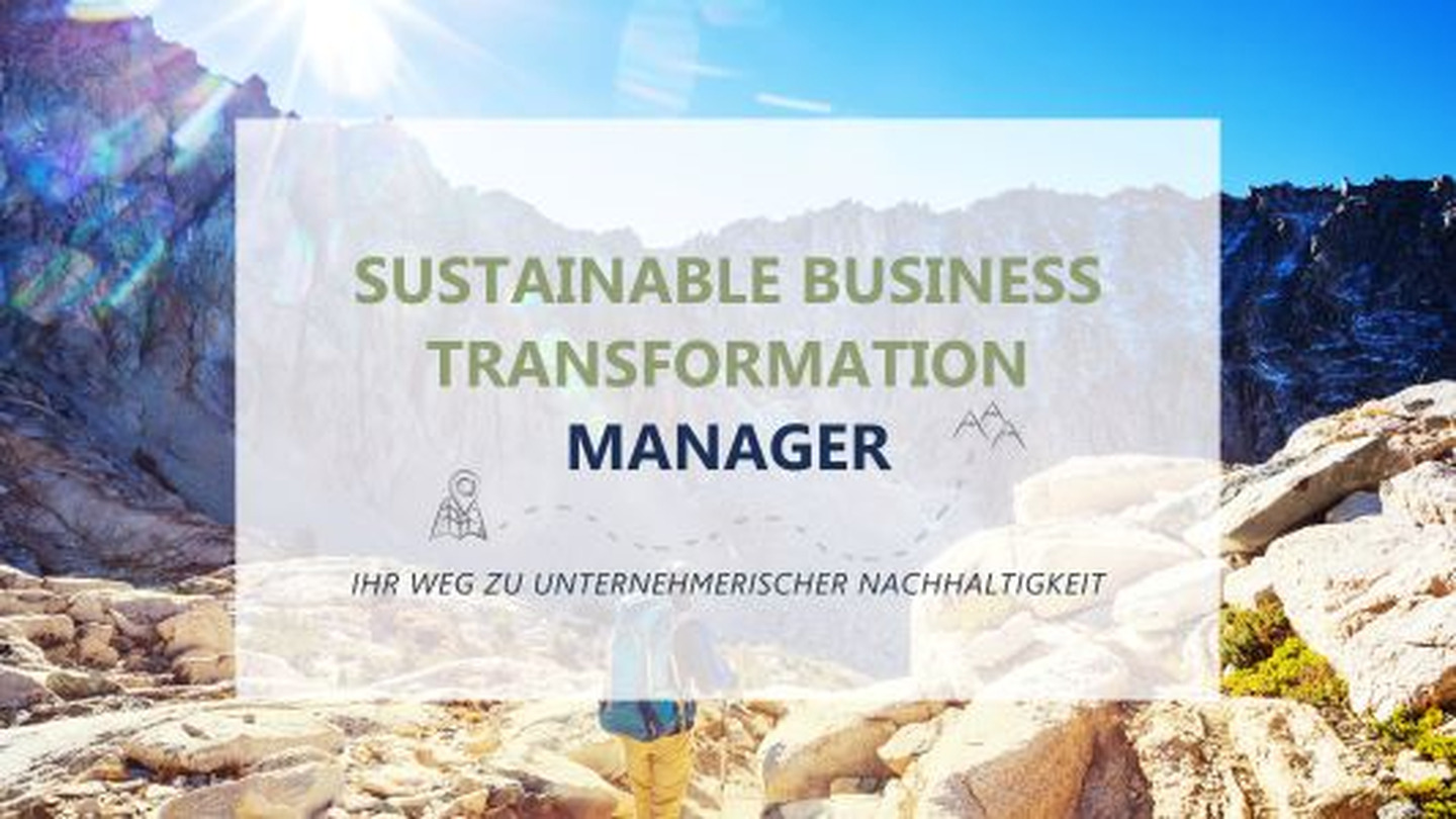 Sustainable Business Transformation Manager