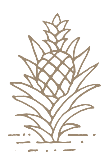 Pineapple Amaro Graphic