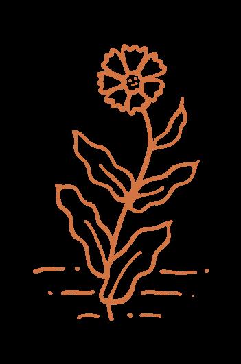 Creme De Flora Graphic