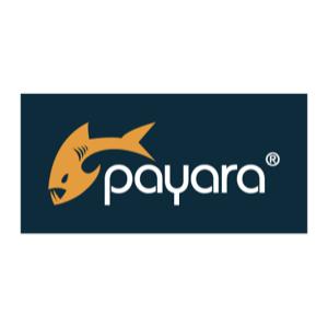 Payara2