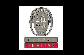 bureau-varitas-logo